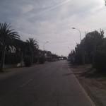 IMG_20120225_104026
